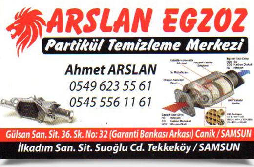 ARSLAN EGZOS, PARTİKÜL TEMİZLEME MERKEZİ